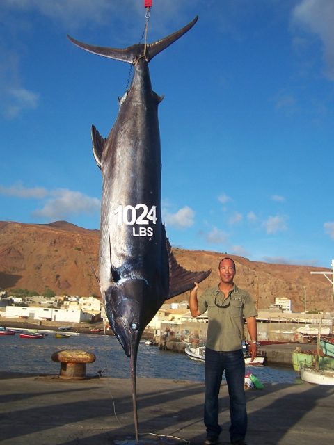 Faust Van Meel on Black Marlin